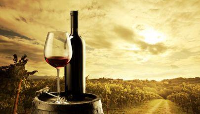 Degustación de vinos Vinosfera Palermo (Min 2 Pax)